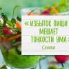 Как быстро похудеть или Теория осознанного питания