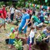 День отца в ботсаду: папы с детьми высадили более 50 рододендронов!