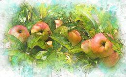 Яблочный Спас: открытки и поздравления