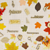 10 необычных подарков воспитателям и учителям