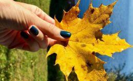 Осенний маникюр: идеи для красивых ноготков