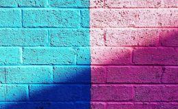 5 версий почему голубой для мальчиков, а розовый для девочек