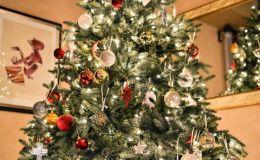 К Новому году готовы: кто из звезд уже украсил елку