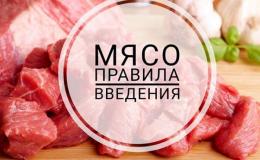 Мясо в детском рационе: какое, когда и сколько