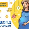40 НЕДЕЛЬ беременности под самой надежной ЗАЩИТОЙ: мамин календарь