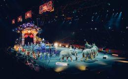 Цирк без животных в Украине: за или против? Мнение юриста