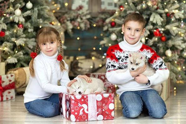 щедрівки для дітей українською