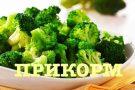 С каких овощей можно начинать прикорм, а с какими стоит отложить знакомство