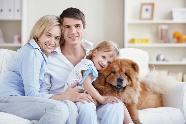Психология и семейные отношения - фото