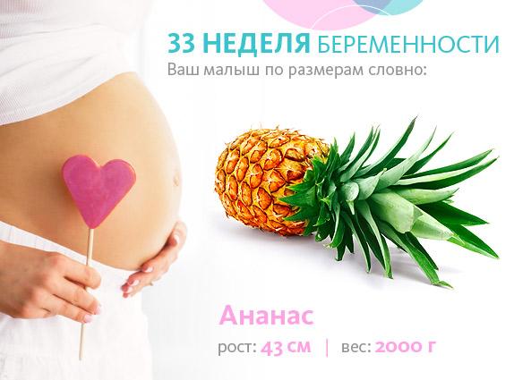 плод на 33 неделе беременности