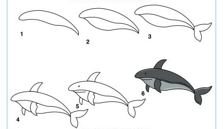 https://www.activityvillage.co.uk/sites/default/files/images/learn_to_draw_a_shark_460_0.jpg